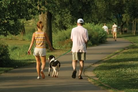 couple walking dog in a park