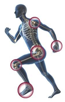 Orthopedic Skeleton Spokane Orthopedics, P...